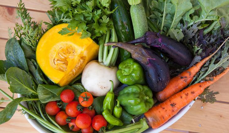 旬の野菜からあふれるチカラ!